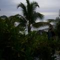 maldives 057.jpg