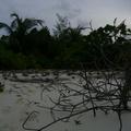 maldives 061.jpg