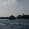 maldives 124.jpg