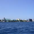 maldives 128.jpg