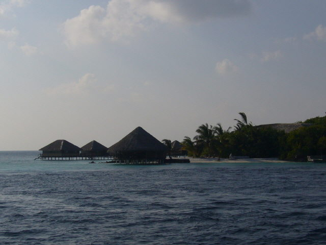maldives%20124.jpg